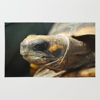 turtle Area & Throw Rugs featuring turtle by Mylittleradical
