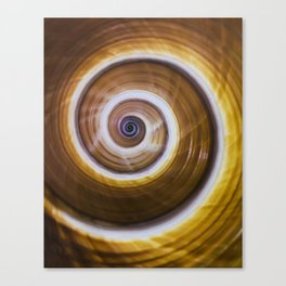 Brown and yellow spiral shell pattern Canvas Print