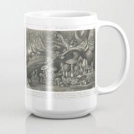 Fungi, Mushroom Plants, Boletus, Agaric Coffee Mug