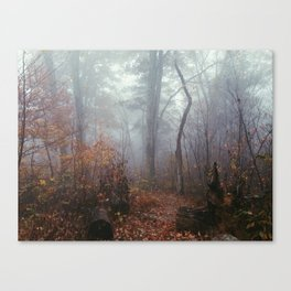 Appalachian Trail in Fog Canvas Print