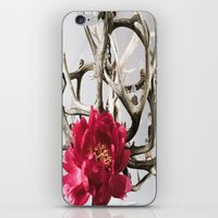 antler iPhone & iPod Skins featuring Antler Flower by Jodi Kassowitz Photography