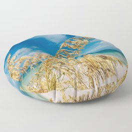 Gulf of Mexico Floor Pillow