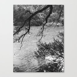 Alpine Lake through the Trees Canvas Print