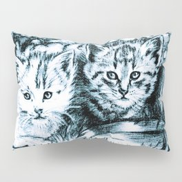 Blue Baby Cats Pillow Sham