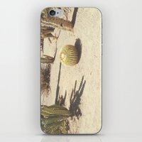 cacti iPhone & iPod Skins featuring Cacti by Amber Barkley
