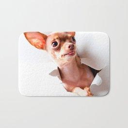 Chihuahua  dog  Tearing Through Bath Mat