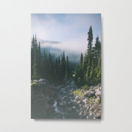 Washington III Metal Print