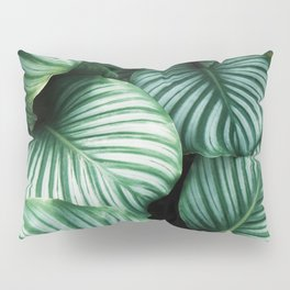 All about Leaves Pillow Sham