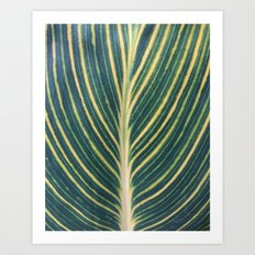 Leaf Stripes Art Print