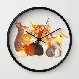 Elephant shrew crew Wall Clock