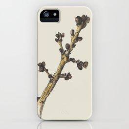 sprig iPhone Case