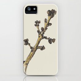 sprig iPhone Case