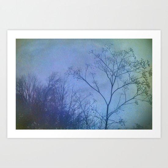 The Quiet of Winter Art Print