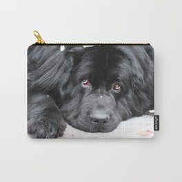 Bentley Bear Carry-All Pouch
