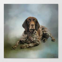 Waiting For A Cue - German Shorthaired Pointer Canvas Print