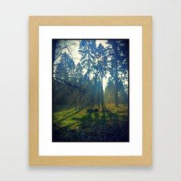Green Light Framed Art Print