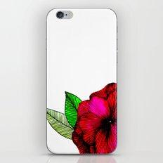 C O L O R iPhone Skin