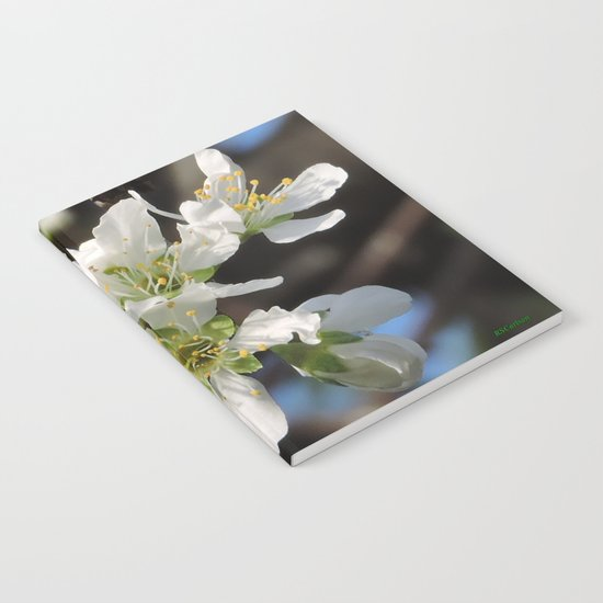 Plum Blossoms Notebook