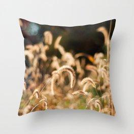 Golden Autumn Grass Throw Pillow