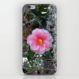 Southern Pink Camellia iPhone Skin
