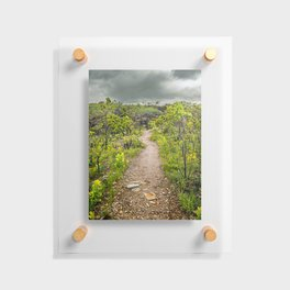 The path of Cerrado. Rocky trail surrounded by the Cerrado vegetation of Brazil on a cloudy day. Floating Acrylic Print