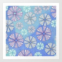 sea urchin blue watercolor Art Print