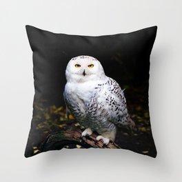 Majestic winter snowy owl Throw Pillow