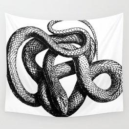 Snake   Snakes   Snake ball   Serpent   Slither   Reptile Wall Tapestry