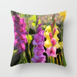 Multi-Colored Gladiolus Throw Pillow