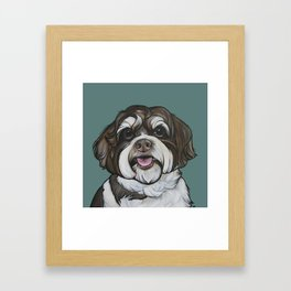 Wallace the Havanese Framed Art Print