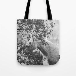 Horse II _ Photography Tote Bag