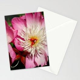 Beautiful Twins Stationery Cards