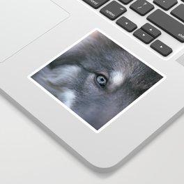 Universe Eye Sticker