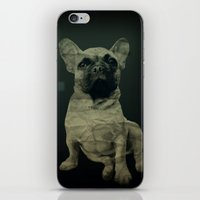 frenchie iPhone & iPod Skins featuring Frenchie by Mi Nu Ra