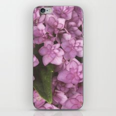 Double Bloom Hydrangea iPhone & iPod Skin