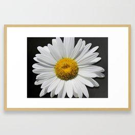 Contemporary White Daisy on Grey Pop Of Yellow Art A490 Framed Art Print