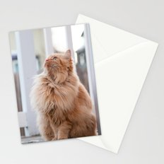Here kitty Stationery Cards