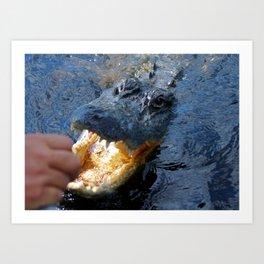Catch the alligator Art Print