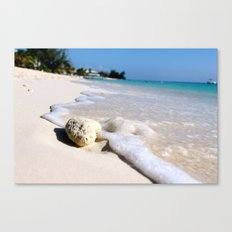 Sandy Shoreline Canvas Print