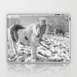 Snow Ponies Laptop & iPad Skin