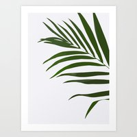fern Art Prints featuring Fern by Tamsin Lucie