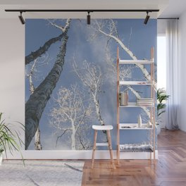 Aspen Trees to the Sky  Wall Mural