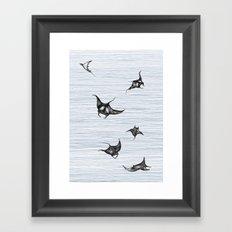 Manta rays in flight Framed Art Print