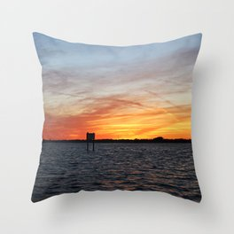In the Manatee Zone Throw Pillow
