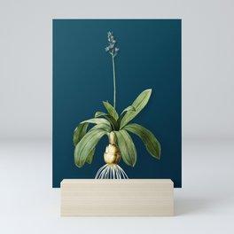 Vintage Floral Scilla Lilio Hyacinthus Botanical on Teal Mini Art Print