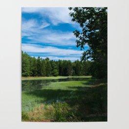 A Maine Marshland Poster