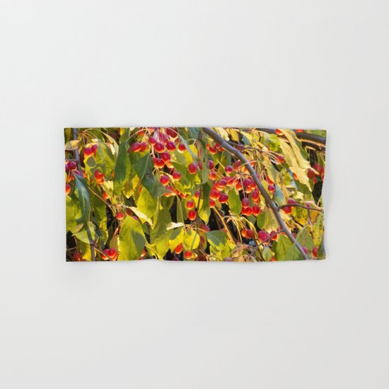 Bright red berries on a tree by beyondthegoattote