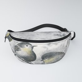 Cuál es? (which is the one?) Fanny Pack