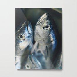 Tuna fish - still life - fine art - photo - print, high quality,macro, interior design, wall decor Metal Print