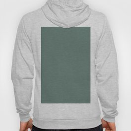 Softened Forest Green Solid Color Pairs To PPG 2021 Trending Hue Salal Leaves PPG1137-6 Hoody